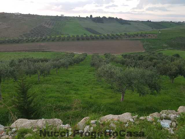 Appezzamento di terreno con progetto approvato.
