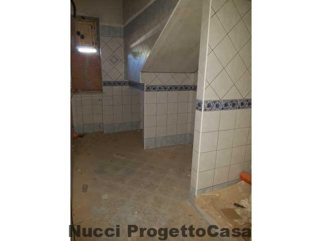 foto11(4)